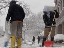 Neighborhood Shoveling Teams